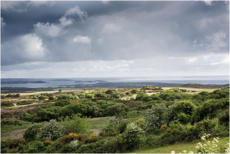 landscape photograph of studland in dorset